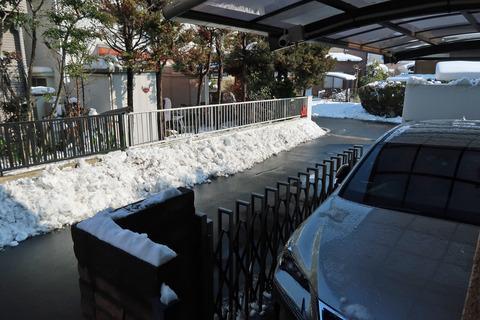 snow20180123 (2)