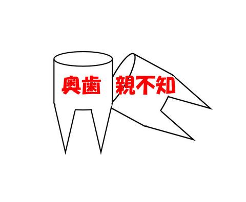 oyashirazu20170805