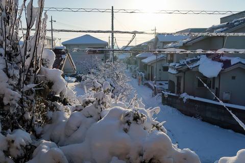 snow20180123 (1)