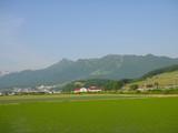 富良野西岳全景