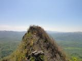 山頂が見えた