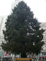 010208rockefellercenter'stree