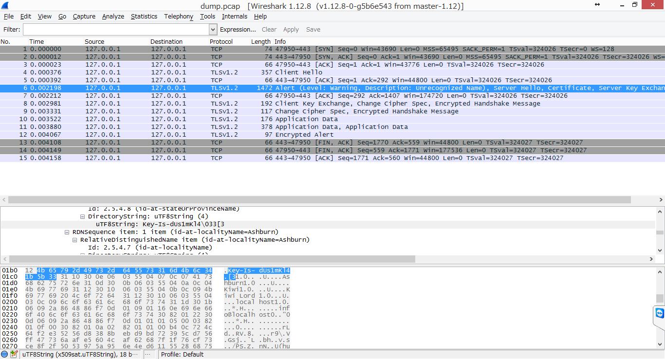 CTF日本語サイト : Hack Dat Kiwi 2015 writeup SSL Sniff 1