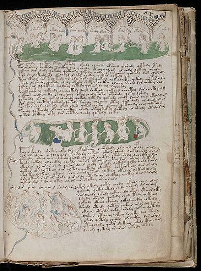 446px-Voynich_Manuscript_(153)