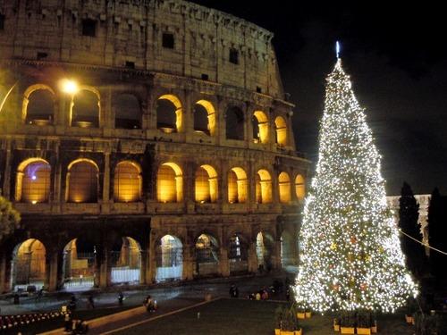 画像7・コロッセオのクリスマスツリー