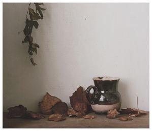 KiKusa-写真workshop-4