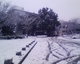 大学正門内側1