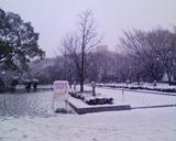 大学正門内側2