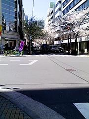 さくら通りと平成通りの交差点