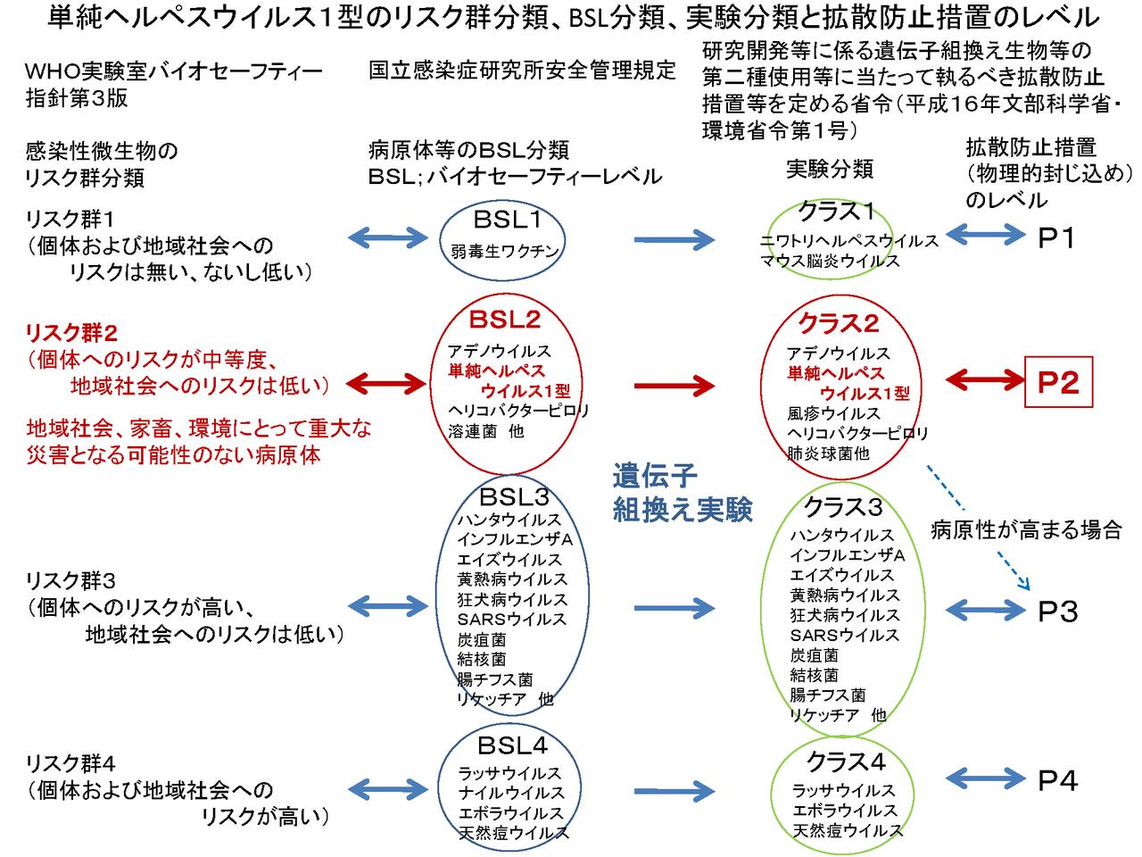 CureSarcom図13