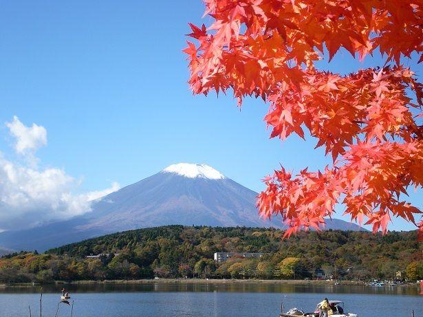 山中湖紅葉画像