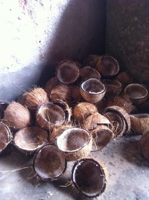 ココナツ削った殻