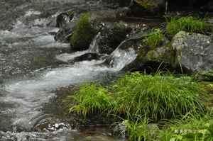 竜返しの滝3