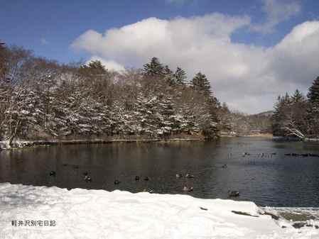 冬の雲場池