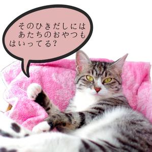 1-はなdd-001