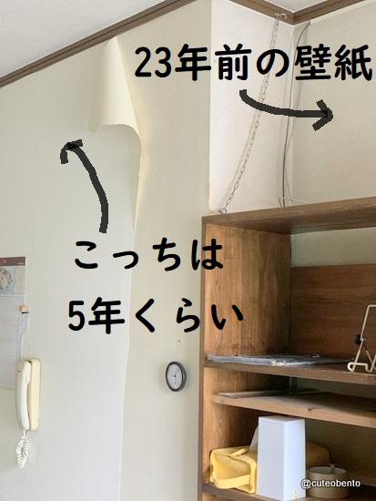 1-IMG_620s0