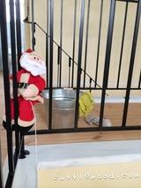 サンタさんと最後の拭き掃除