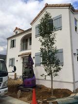 樫の植樹141114 (480x640)