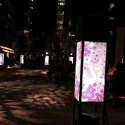 日本橋桜フェス
