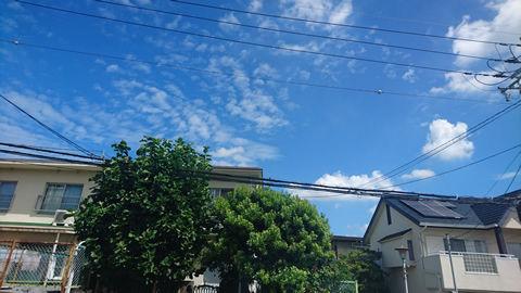 今日もいい天気・・・