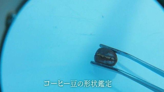 kasou-S17-11-003