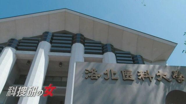 kasou-S17-12-008