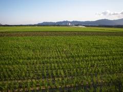 吉田の風景