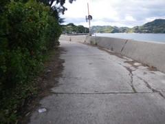 岡村島周回道路