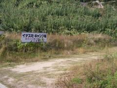 イナズミキャンプ場