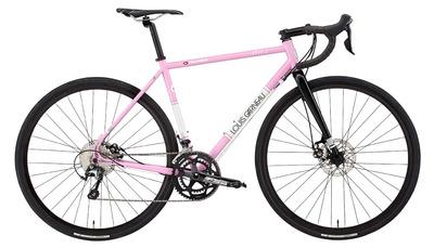 hst2_pink