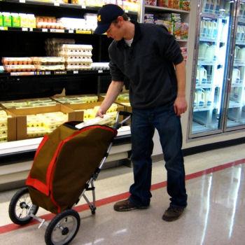 The Urban Shopping Cart