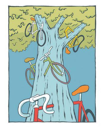 bikecricket2010