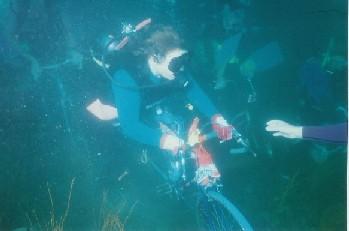 海底バイクレース