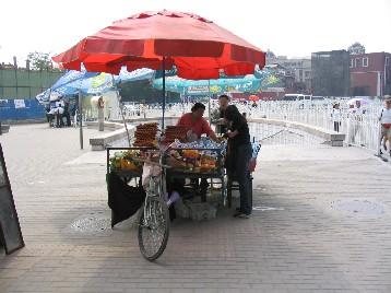 自転車の荷台とは思えない
