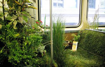 The mobile garden, themobilegarden.org