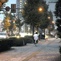 歩道ガラガラ