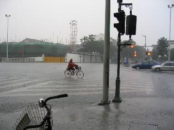 かなりの土砂降り