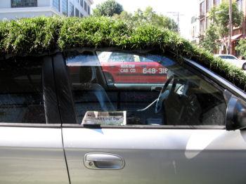 車上緑化?