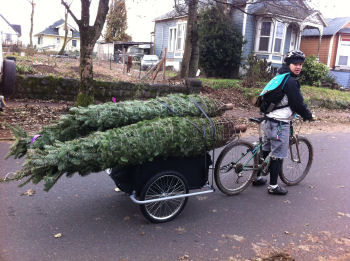 Trees By Bike, treesbybike.com