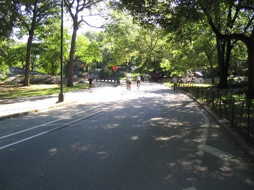 広い舗装路