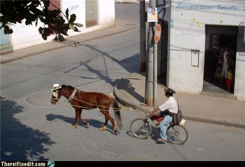 Bike and Pony