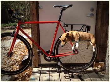 Fairdale Dograck, fairdalebikes.com