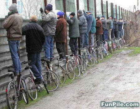 観戦用自転車