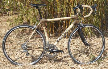 zambikes, www.zambikes.com