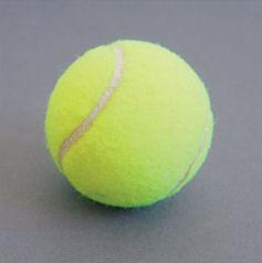 テニスボールを