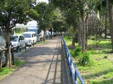 公園の脇も駐車の列