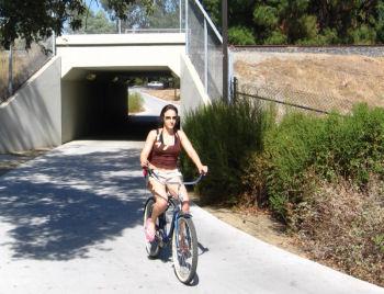 自転車専用道が充実