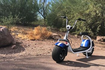 PHAT SCOOTER