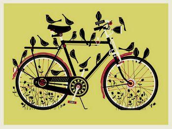 methbirdcycleyell2