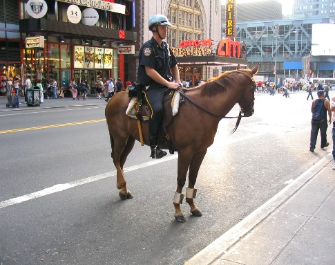騎馬警官もいる